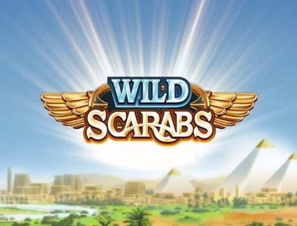 wild scarabs 1