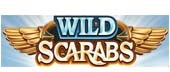 Logo of Wild Scarabs slot